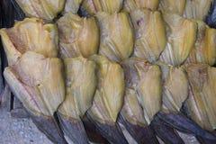 Строка сухих рыб Высушите рыб для зажаренный для еды Консервация еды внутри стоковое изображение rf