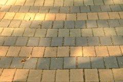 Строка тропы кирпича решетки в на открытом воздухе месте стоковые фото