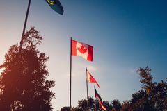 Строка флагов летания наций на предпосылке неба захода солнца флаги стран различные Соединение наций канадский флаг Стоковые Фотографии RF