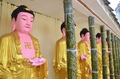 Строка buddhas в Kek Lok Si, Penang стоковые фотографии rf