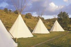 Строка teepees в Aspen, CO Стоковые Фотографии RF