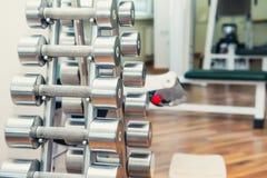 Строки гантелей металла тяжелых на стойке в спортзале спорта, клинике физиотерапии Центр физиотерапии Спортивный инвентарь для тр Стоковое Изображение