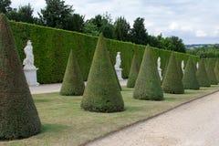 Строки деревьев фигурной стрижки кустов с статуями позади Стоковое Фото