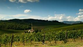 Строки зеленых виноградников в зоне Chianti на солнечный день Сезон лета, Тоскана Timelapse видеоматериал