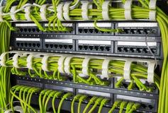 Строки кабелей сети соединились к эпицентру деятельности маршрутизатора и переключателя Стоковые Фотографии RF