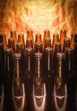 Строки коричневого цвета опорожняют пиво бутылок Стоковое Изображение