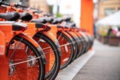 Строки оранжевых припаркованных велосипедов стоковое изображение