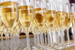 Строки полных стекел шампанского или игристого вина Стоковое Изображение RF