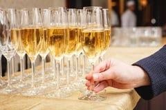 Строки полных стекел шампанского или игристого вина Стоковое Фото