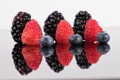 Строки ягод Стоковое Изображение