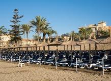 Строки loungers или кроватей на пляже Стоковое Изображение