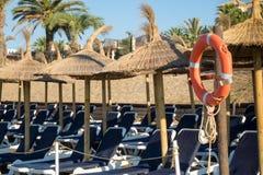 Строки loungers или кроватей на пляже Стоковые Фото