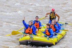 Стропилины на реке Стоковая Фотография