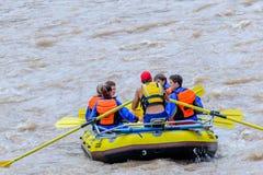 Стропилины на реке Стоковые Фото