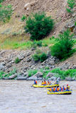 Стропилины на реке Стоковые Изображения