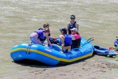 Стропилины на реке Стоковые Фотографии RF