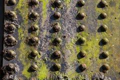 Струбцины винта стального железнодорожного моста сильны Стоковая Фотография RF