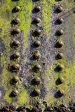 Струбцины винта стального железнодорожного моста сильны Стоковое Изображение