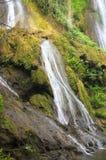 Струи воды водопада падают от высоты между утесами и vegeta Стоковые Изображения