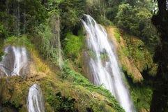 Струи воды водопада падают от высоты между утесами и vegeta Стоковое фото RF