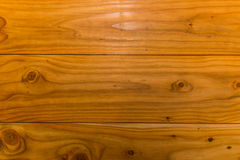 Структура дерева Стоковая Фотография