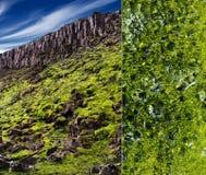 Структура земной поверхности Стоковые Фотографии RF