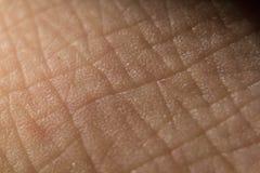 Структура крупного плана ладони поверхности кожи Neer стоковые изображения