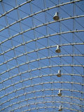Структура металла и стекла Стоковые Изображения RF