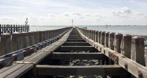 Структура древесины Seasight Стоковые Фотографии RF