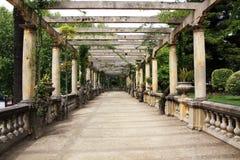 Структура сада Стоковые Изображения