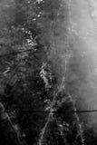 Структура льда Стоковая Фотография