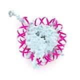 Структура nucleosome Стоковые Изображения
