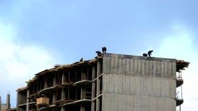 Структуры строения работников на крыше строя конкретная безопасность рельсов предохранителя flyforms крана конструкции возвышаетс акции видеоматериалы