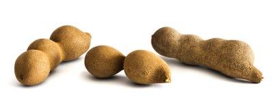 3 стручка сырцовых плодоовощей тамаринда всех Стоковые Фотографии RF