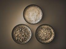 Стручки кардамона, рис, гайки сосны Стоковые Фотографии RF