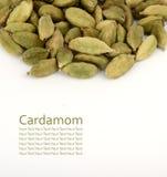 Стручки кардамона Стоковые Фото