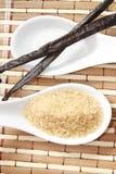 Стручок тростникового сахара и ванили стоковые изображения