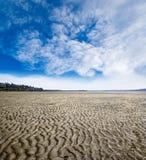 Струят картина пляжа во время малой воды на белом утесе, великобританском Col Стоковое Изображение