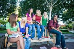 студенты группы Стоковая Фотография RF