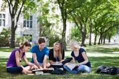 студенты колледжа изучая совместно Стоковые Фотографии RF