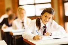 Студенты средней школы Стоковое Изображение
