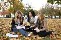 студенты 3 стоковое фото