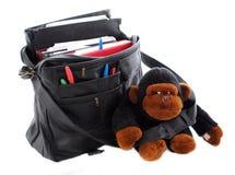 студент изолированный гориллой Стоковые Изображения