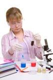 студент лаборатории Стоковые Изображения