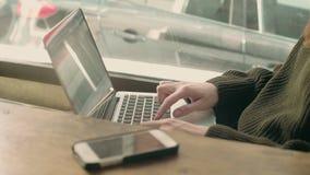 Студент молодой женщины работает удаленно на кафе видеоматериал