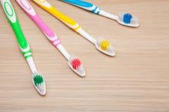 Студия зубной щетки цветов никто стоковое изображение rf