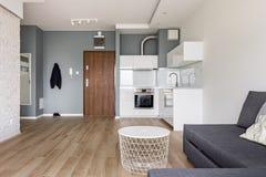 Студия плоская с малой кухней стоковое фото rf