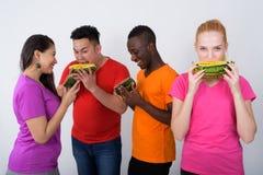 Студия сняла счастливого девочка-подростка с разнообразной группой в составе multi et Стоковая Фотография RF