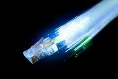 Студия сняла LAN и кабелей стекловолокна на черной предпосылке Стоковые Изображения RF