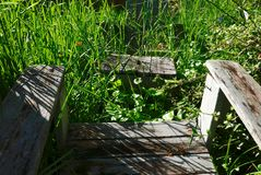 Стулья сада затемненные высокорослыми засорителями и тенями Стоковое Изображение RF